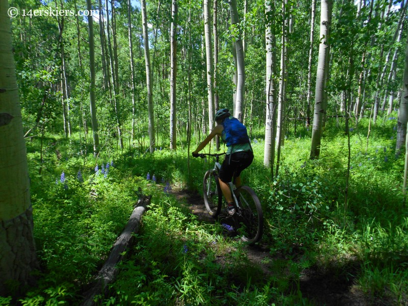 Mountain biking near Crested Butte
