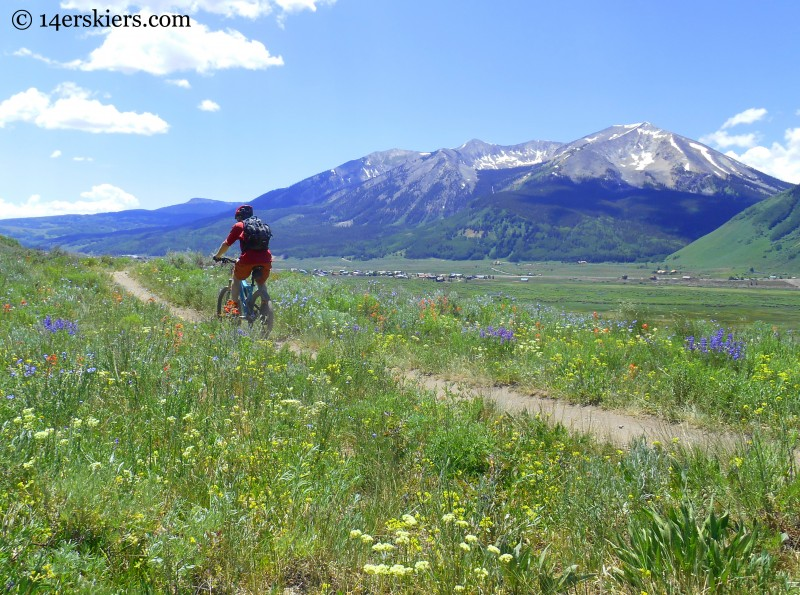 mountain biking Tony's Trail near Crested Butte