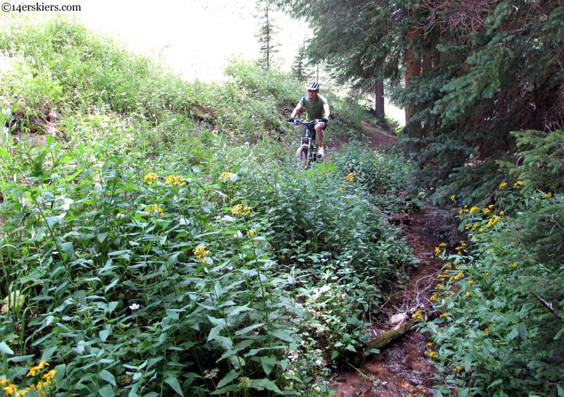trail 412
