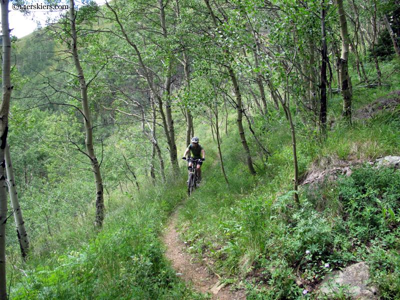 riding through aspens