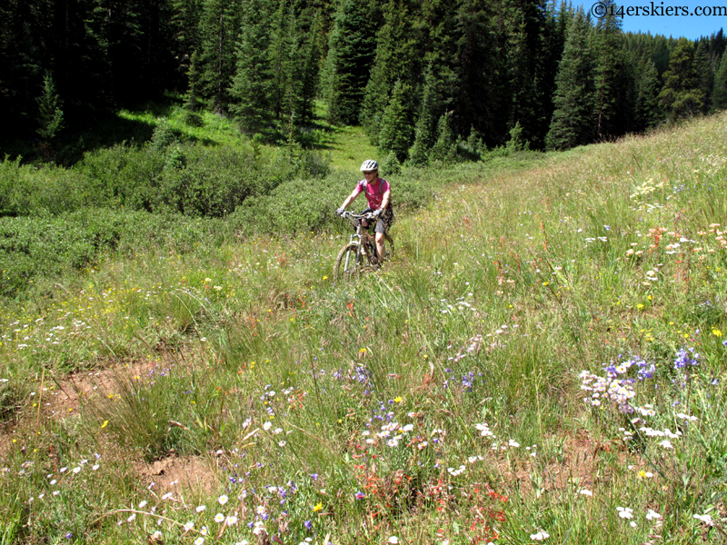 deadman's mountain biking crested butte