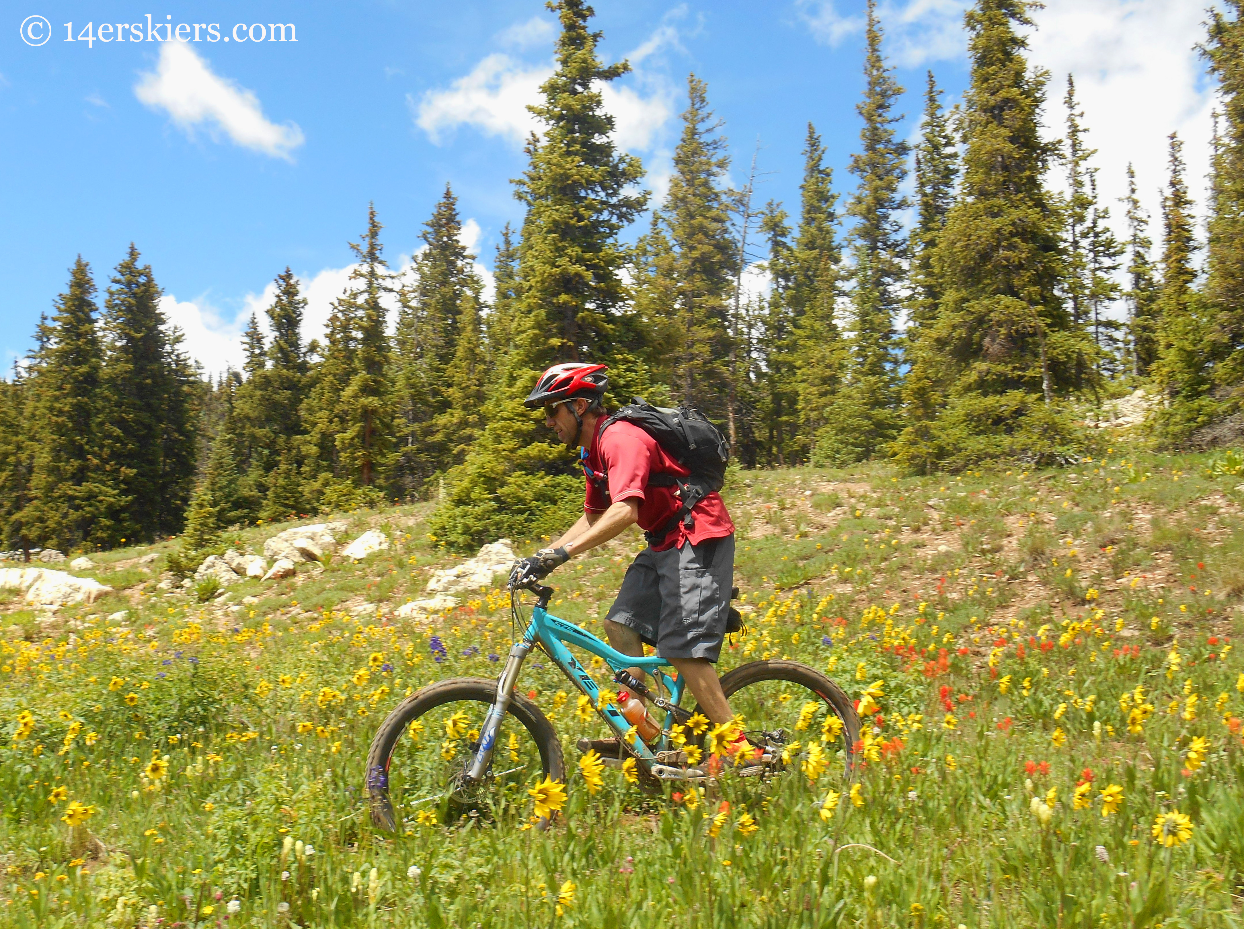 mtb crested butte