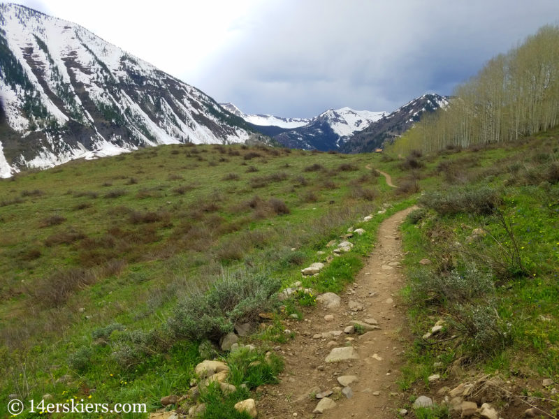 Lupine Trail - Early Season hikes near Crested Butte