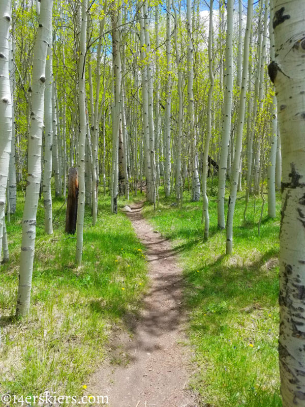 Upper Loop - Early season hikes near Crested Butte