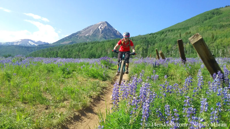 Brittany Konsella's goal to ride 700 miles of singletrack in the summer of 2017