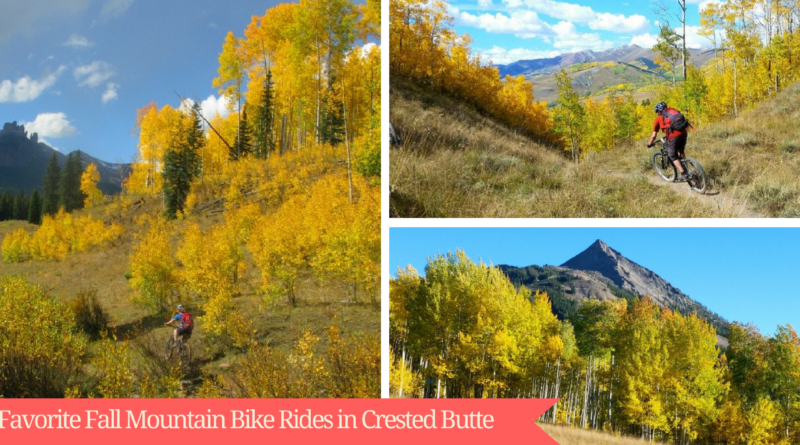 7 Favorite Fall Mountain Bike Rides in Crested Butte