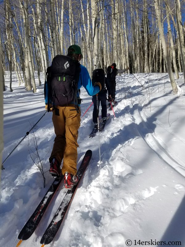 Nothing like the beauty of skinning through an aspen forest!