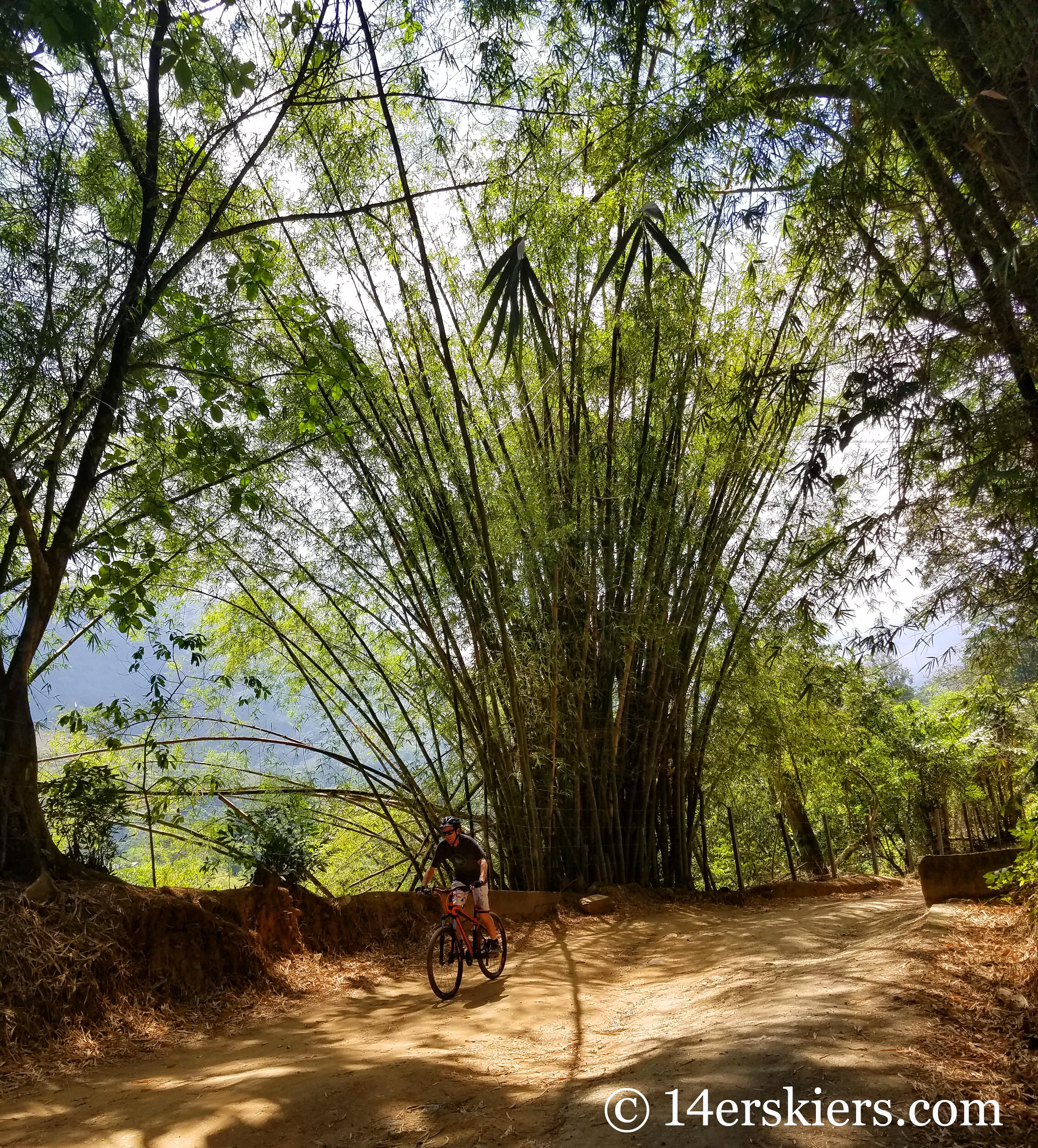 Mountain biking in Minca, Colombia