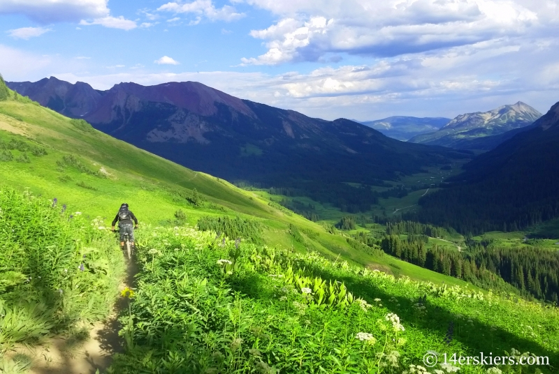 Riding Among the Wildflowers - Trailriders 401 in Crested Butte