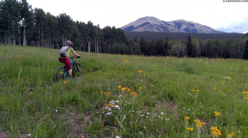 TR:  Lily Lake- Carbon Creek- Wildcat Trail  7.22.17