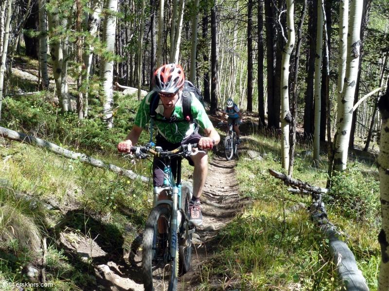 Timberline Trail to Texas Ridge